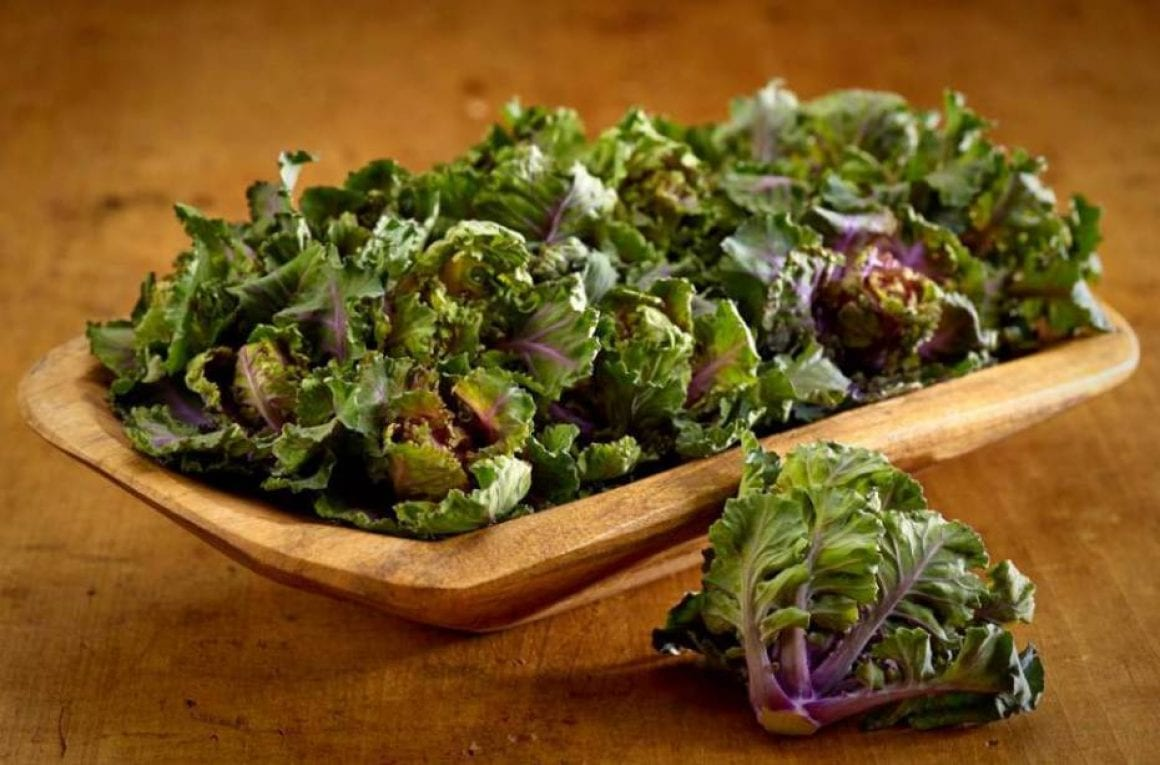 Kalettes  sourced by pej from Facebook  credit Kalettes please